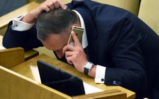 Депутаты за отмену жестких требований к автошколам